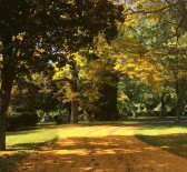 Cultural Trail Image 1